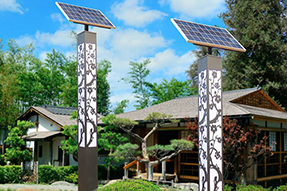 Why LED solar landscaping light can be viewed everywhere?