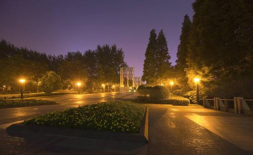 LED Garden Landscaping Light